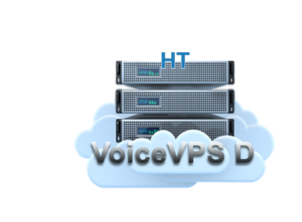 Voice VPS